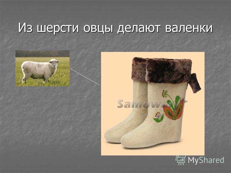 Из шерсти овцы делают валенки