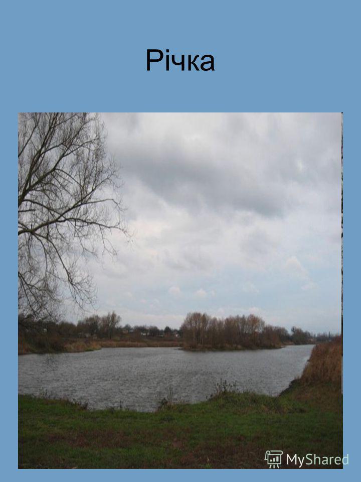 Річка