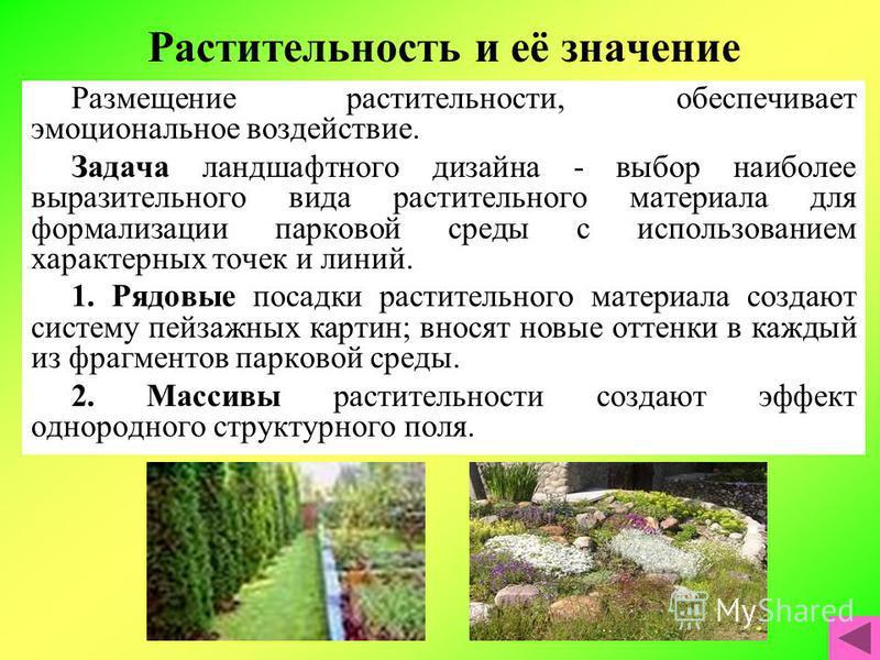 Растительность и её значение Размещение растительности, обеспечивает эмоциональное воздействие. Задача ландшафтного дизайна - выбор наиболее выразительного вида растительного материала для формализации парковой среды с использованием характерных точе