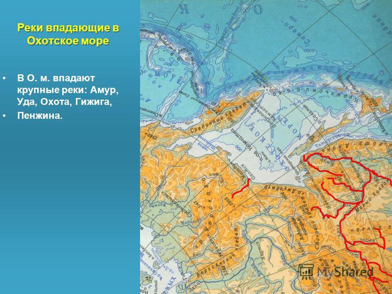 Реки впадающие в Охотское море В О. м. впадают крупные реки: Амур, Уда, Охота, Гижига, Пенжина.