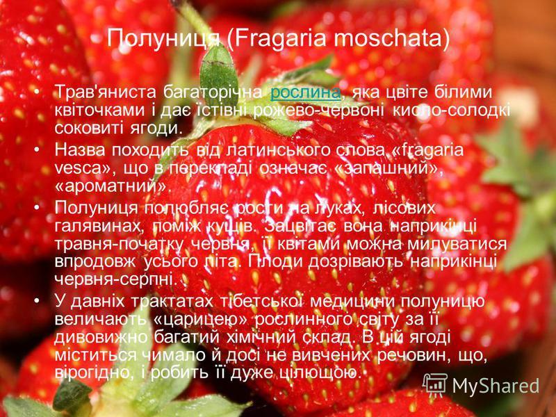 Полуниця (Fragaria moschata) Трав'яниста багаторічна рослина, яка цвіте білими квіточками і дає їстівні рожево-червоні кисло-солодкі соковиті ягоди.рослина Назва походить від латинського слова «fragaria vesca», що в перекладі означає «запашний», «аро