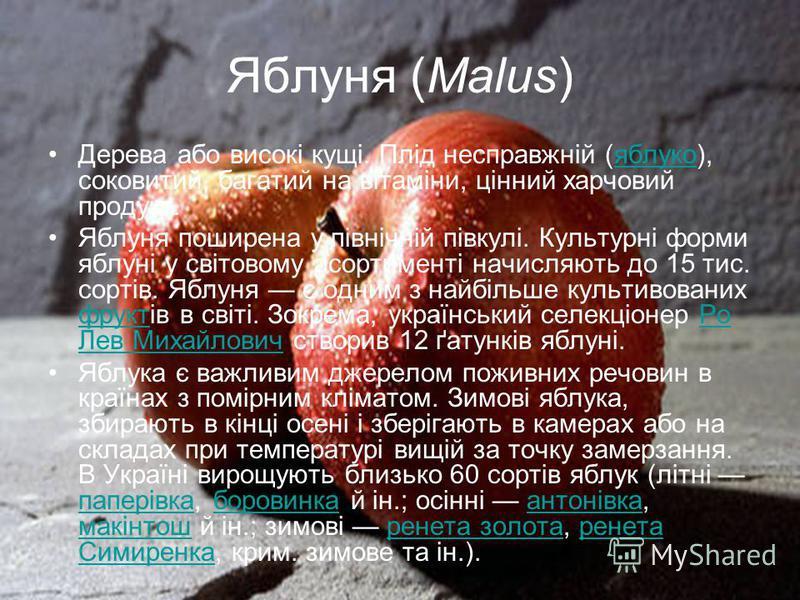 Яблуня (Malus) Дерева або високі кущі. Плід несправжній (яблуко), соковитий, багатий на вітаміни, цінний харчовий продукт.яблуко Яблуня поширена у північній півкулі. Культурні форми яблуні у світовому асортименті начисляють до 15 тис. сортів. Яблуня