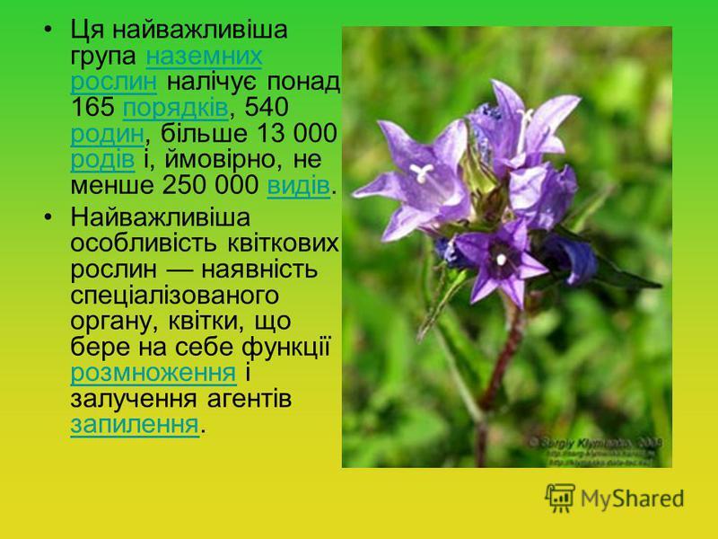 Ця найважливіша група наземних рослин налічує понад 165 порядків, 540 родин, більше 13 000 родів і, ймовірно, не менше 250 000 видів.наземних рослинпорядків родин родіввидів Найважливіша особливість квіткових рослин наявність спеціалізованого органу,