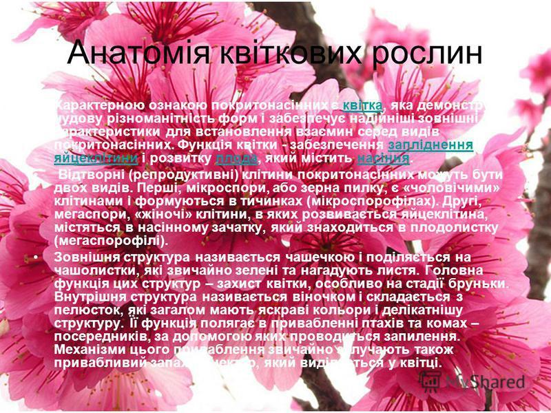 Анатомія квіткових рослин Характерною ознакою покритонасінних є квітка, яка демонструє чудову різноманітність форм і забезпечує надійніші зовнішні характеристики для встановлення взаємин серед видів покритонасінних. Функція квітки - забезпечення запл