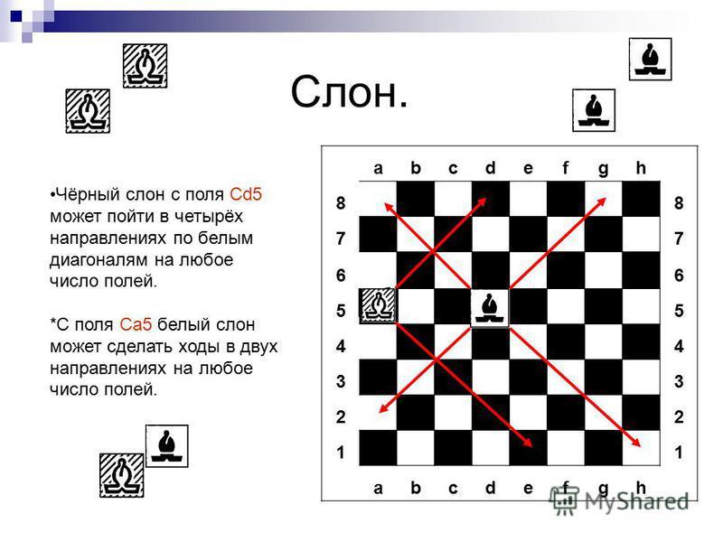 Слон. abcdefgh 8 8 7 7 6 6 5 5 4 4 3 3 2 2 1 1 abcdefgh Чёрный слон с поля Сd5 может пойти в четырёх направлениях по белым диагоналям на любое число полей. *С поля Cа 5 белый слон может сделать ходы в двух направлениях на любое число полей.