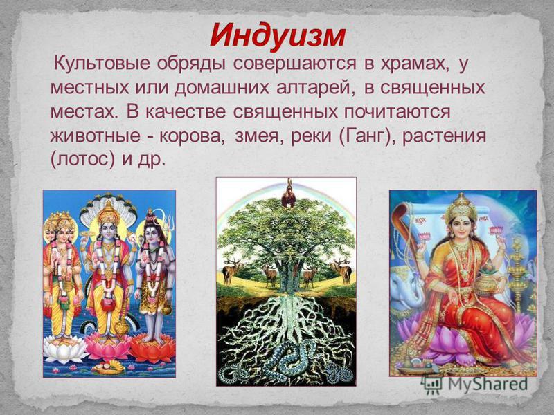Культовые обряды совершаются в храмах, у местных или домашних алтарей, в священных местах. В качестве священных почитаются животные - корова, змея, реки (Ганг), растения (лотос) и др.