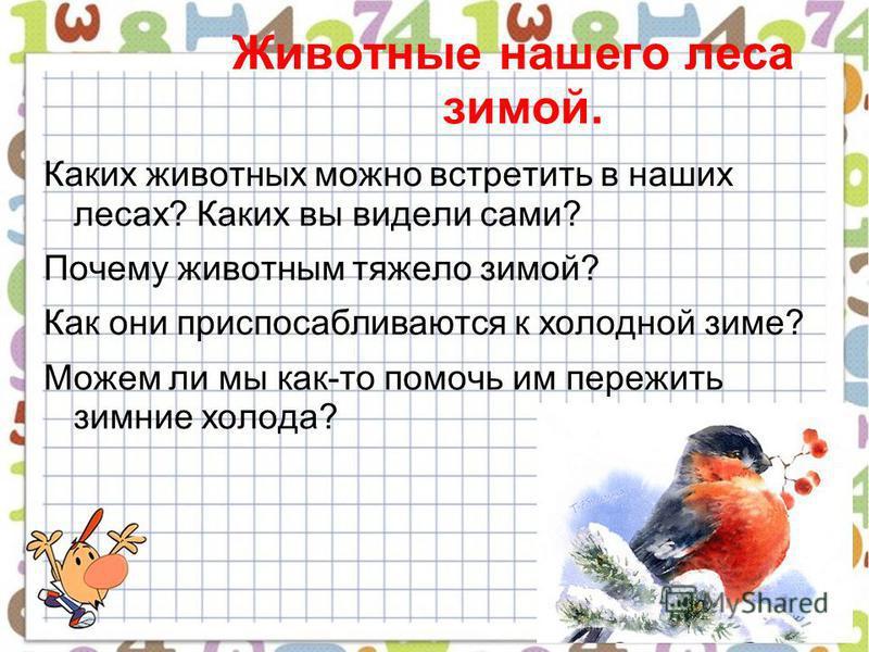Животные нашего леса зимой. Каких животных можно встретить в наших лесах? Каких вы видели сами? Почему животным тяжело зимой? Как они приспосабливаются к холодной зиме? Можем ли мы как-то помочь им пережить зимние холода?