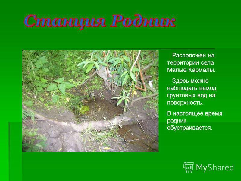 Расположен на территории села Малые Кармалы. Здесь можно наблюдать выход грунтовых вод на поверхность. В настоящее время родник обустраивается.