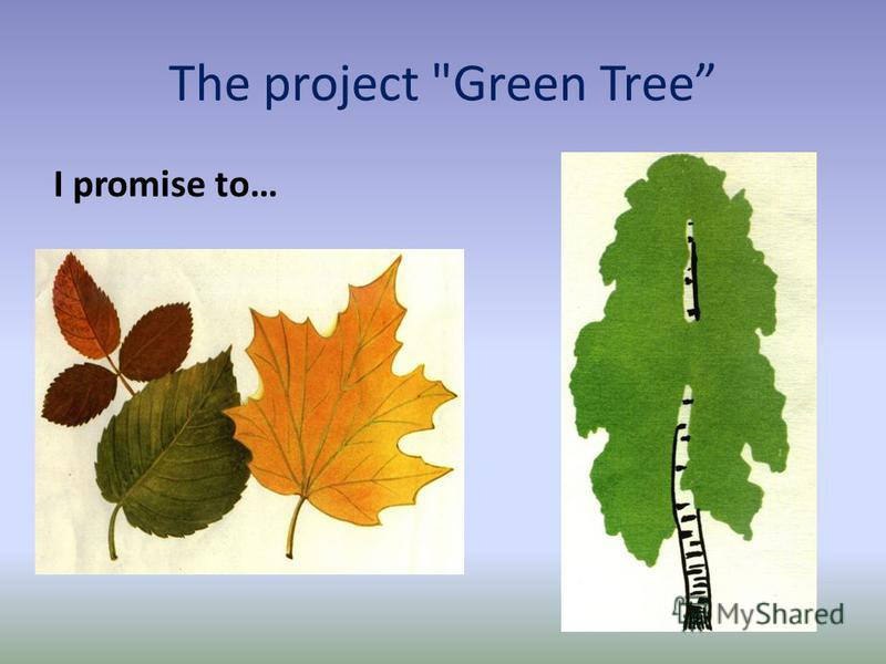 The project Green Tree I promise to…