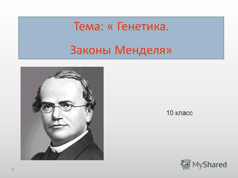 Тема : « Генетика. Законы Менделя » 10 класс