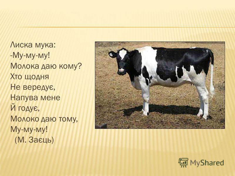 Лиска мука: -Му-му-му! Молока даю кому? Хто щодня Не вередує, Напува мене Й годує, Молоко даю тому, Му-му-му! (М. Заєць)