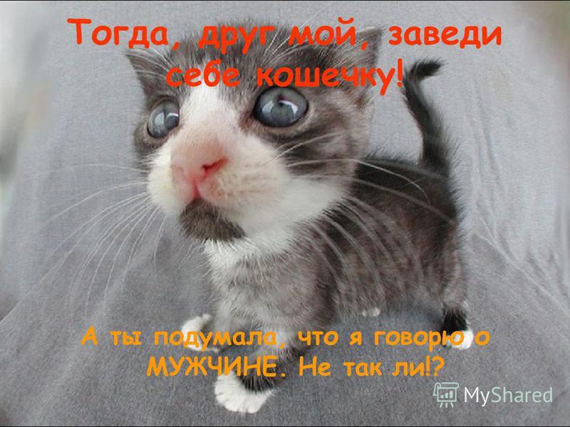 Тогда, друг мой, заведи себе кошечку! А ты подумала, что я говорю о МУЖЧИНЕ. Не так ли!?