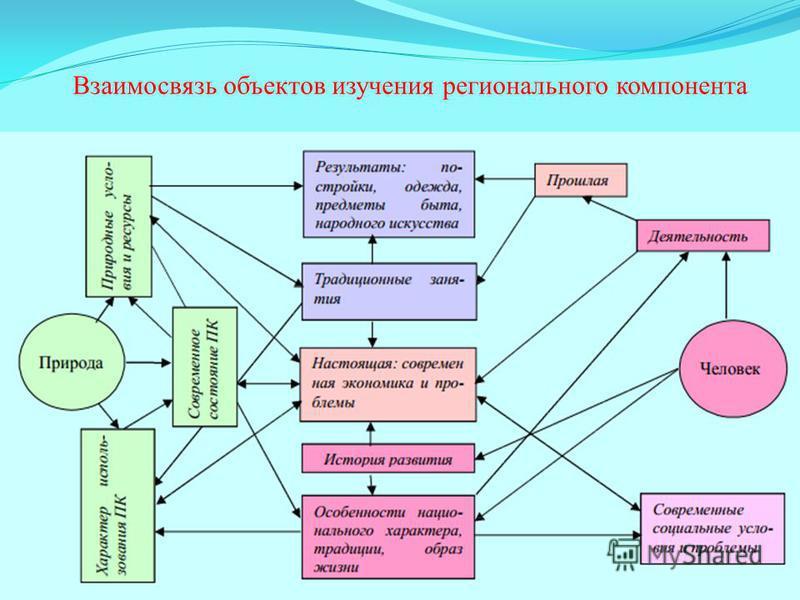 Взаимосвязь объектов изучения регионального компонента