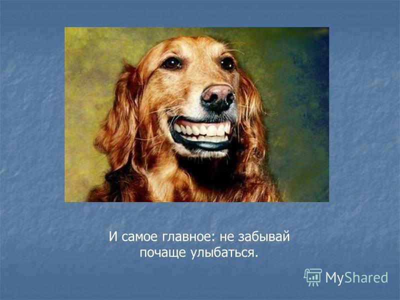 И самое главное: не забывай почаще улыбаться.