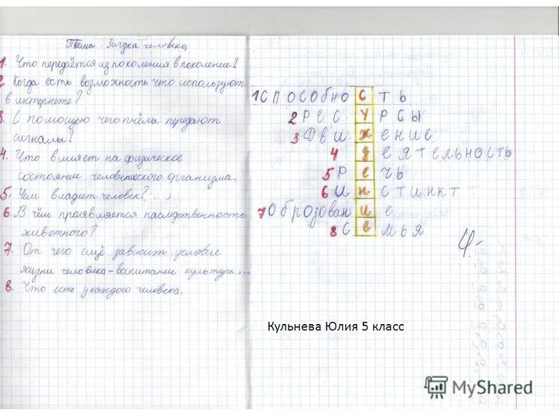 Кульнева Юлия 5 класс