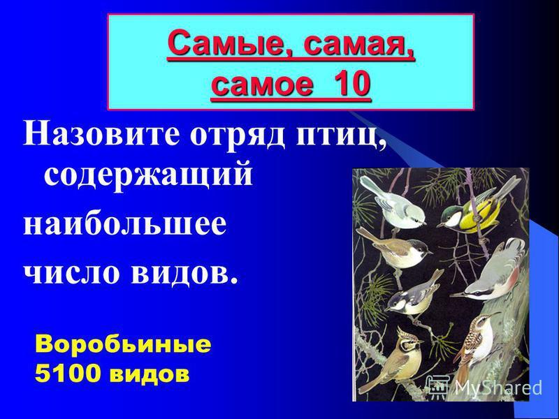 Назовите отряд птиц, содержащий наибольшее число видов. Самые, самая, самое 10 Самые, самая, самое 10 Воробьиные 5100 видов