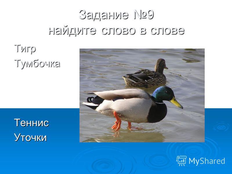 Задание 9 найдите слово в слове Тигр ТумбочкаТеннис Уточки