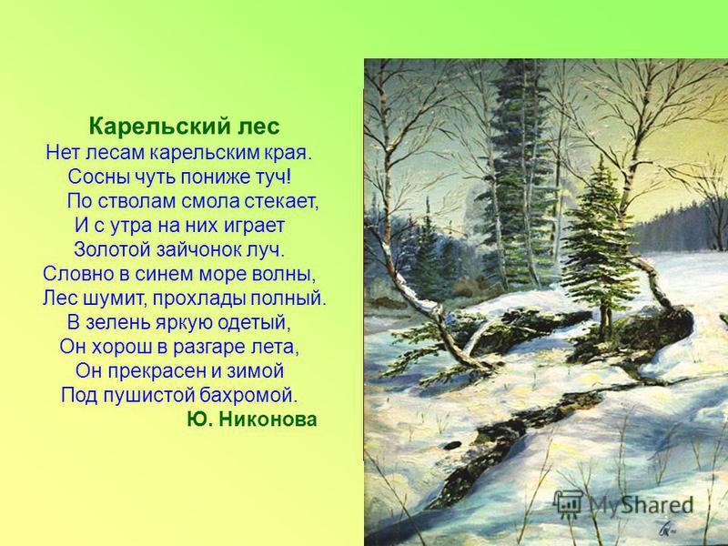 Карельский лес Нет лесам карельским края. Сосны чуть пониже туч! По стволам смола стекает, И с утра на них играет Золотой зайчонок луч. Словно в синем море волны, Лес шумит, прохлады полный. В зелень яркую одетый, Он хорош в разгаре лета, Он прекрасе