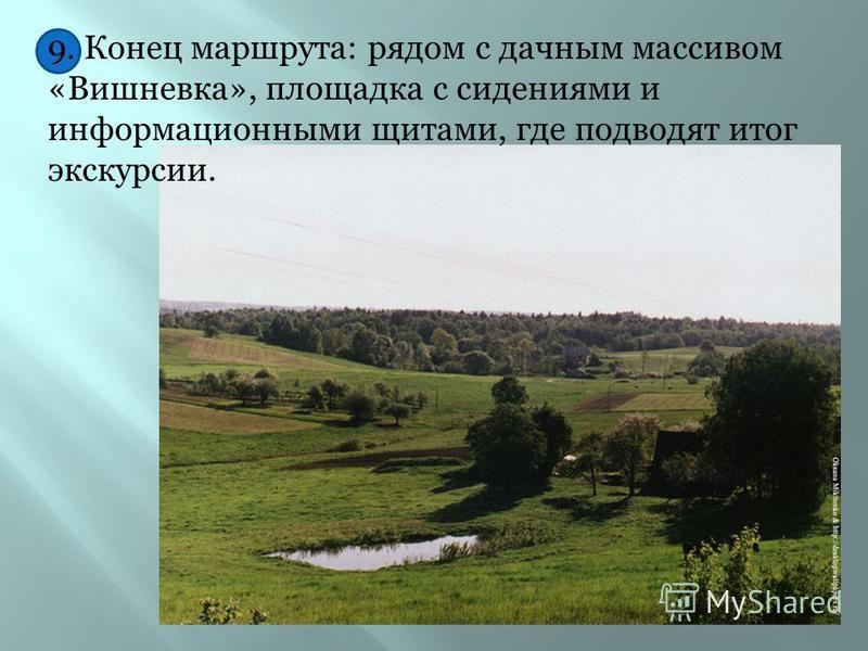 8. Остановка восьмая – смешанный лес впоследствии этот объект можно демонстрировать как объект биогеоценоза со всеми его компонентами и природными явлениями.