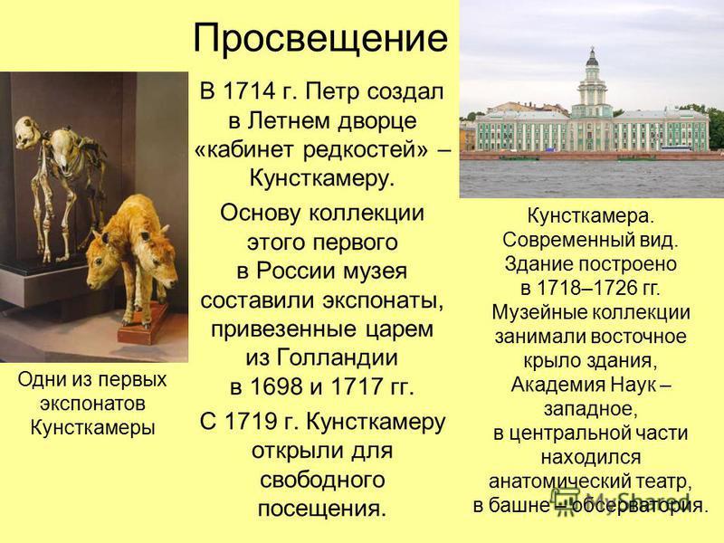 Просвещение В 1714 г. Петр создал в Летнем дворце «кабинет редкостей» – Кунсткамеру. Основу коллекции этого первого в России музея составили экспонаты, привезенные царем из Голландии в 1698 и 1717 гг. С 1719 г. Кунсткамеру открыли для свободного посе