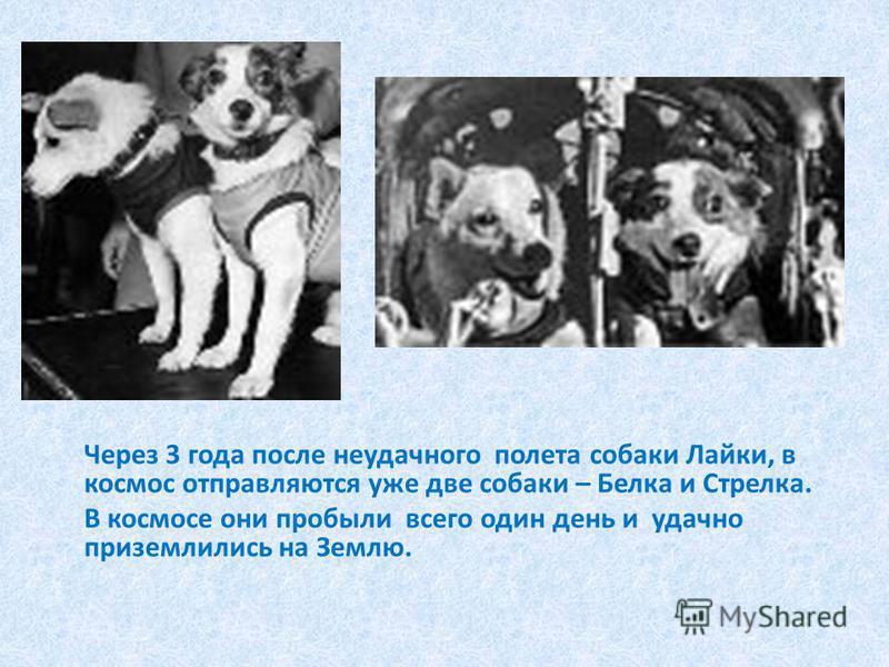 Через 3 года после неудачного полета собаки Лайки, в космос отправляются уже две собаки – Белка и Стрелка. В космосе они пробыли всего один день и удачно приземлились на Землю.