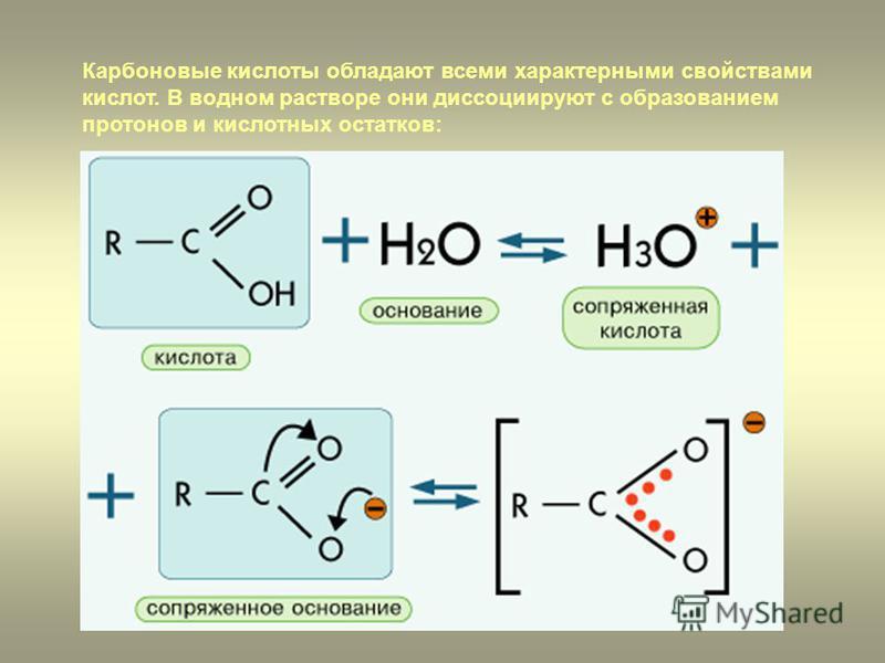 Карбоновые кислоты обладают всеми характерными свойствами кислот. В водном растворе они диссоциируют с образованием протонов и кислотных остатков: