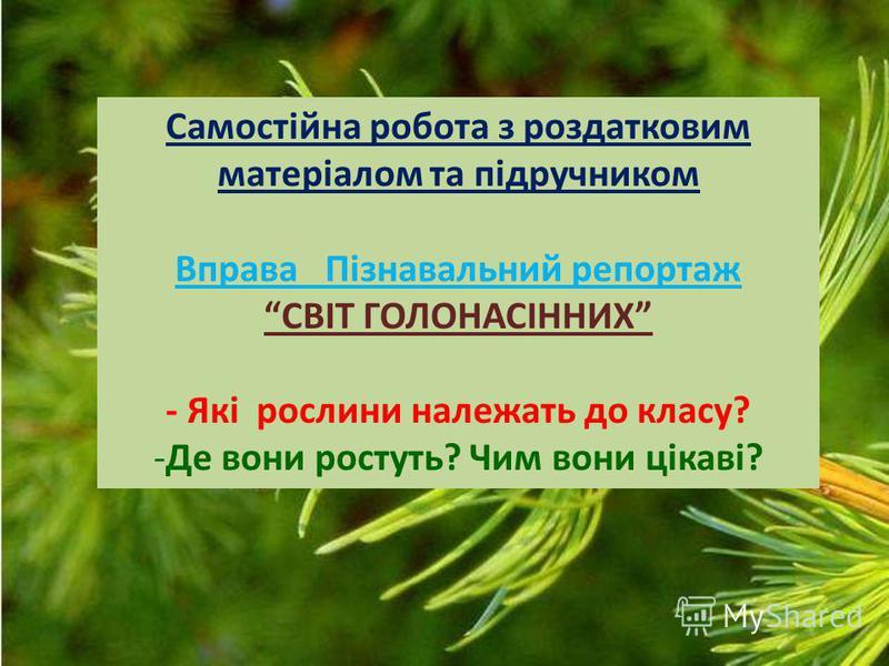 Самостійна робота з роздатковим матеріалом та підручником Вправа Пізнавальний репортаж СВІТ ГОЛОНАСІННИХ - Які рослини належать до класу? -Де вони ростуть? Чим вони цікаві?