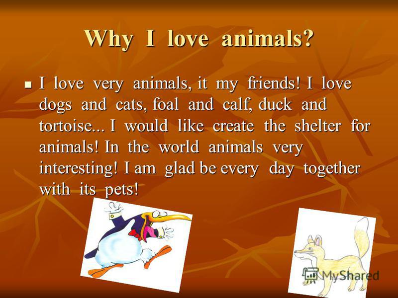 Why I love animals? I love very animals, it my friends! I love dogs and cats, foal and calf, duck and tortoise... I would like create the shelter for animals! In the world animals very interesting! I am glad be every day together with its pets! I lov