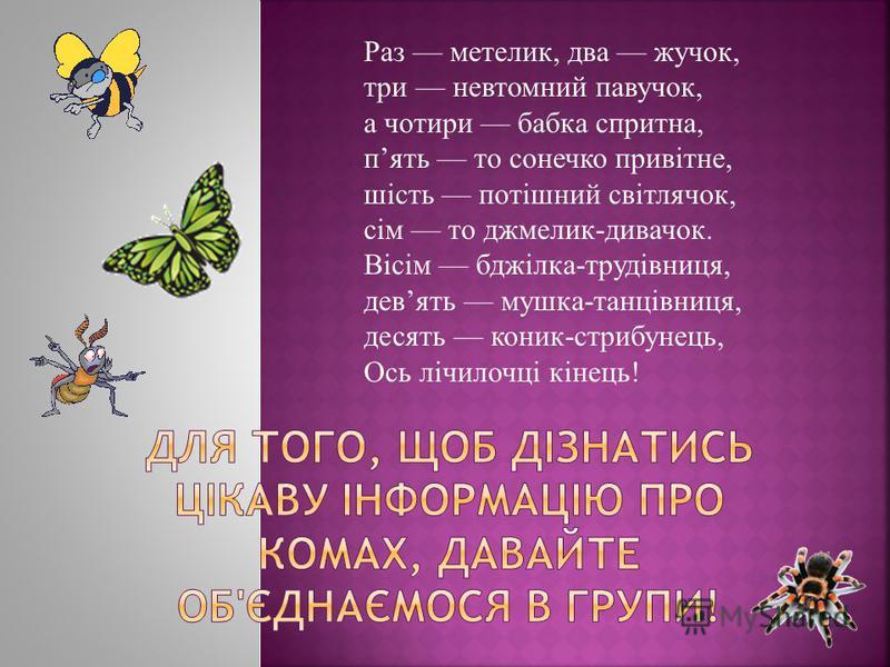Раз метелик, два жучок, три невтомний павучок, а чотири бабка спритна, пять то сонечко привітне, шість потішний світлячок, сім то джмелик-дивачок. Вісім бджілка-трудівниця, девять мушка-танцівниця, десять коник-стрибунець, Ось лічилочці кінець!