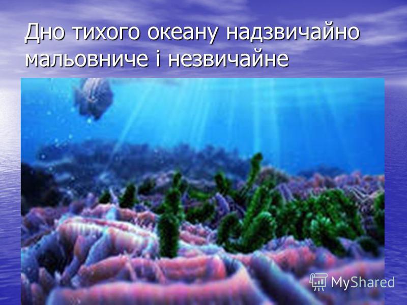 Дно тихого океану надзвичайно мальовниче і незвичайне