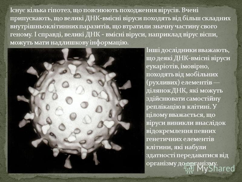 Інші дослідники вважають, що деякі ДНК-вмісні віруси еукаріотів, імовірно, походять від мобільних (рухливих) елементів ділянок ДНК, які можуть здійснювати самостійну реплікацію в клітині. У цілому вважається, що віруси виникли внаслідок відокремленн