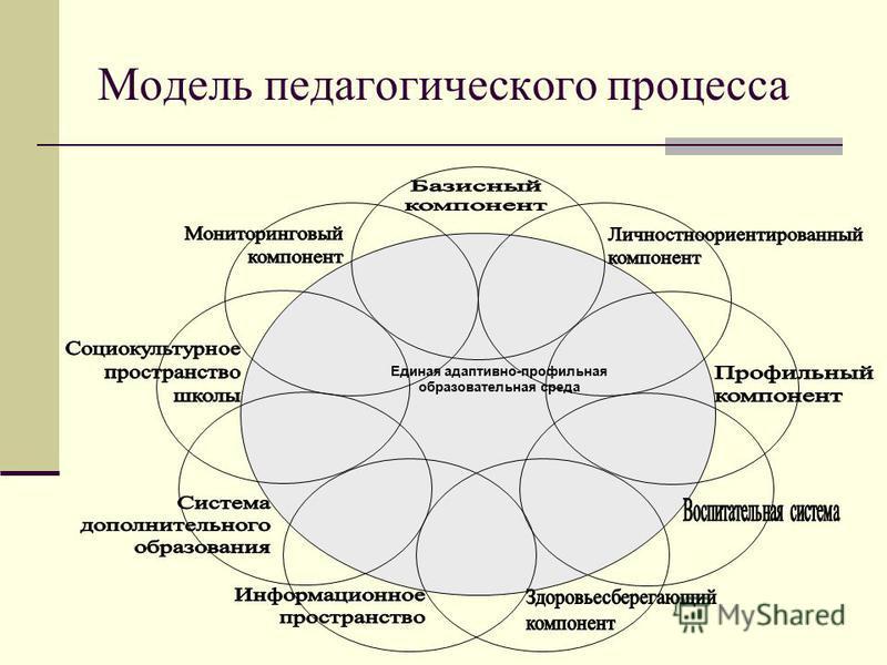Модель педагогического процесса Единая адаптивно-профильная образовательная среда