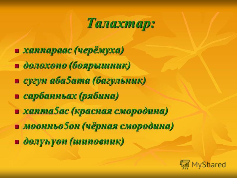 Талахтар: Талахтар: хаппараас (черёмуха) хаппараас (черёмуха) долохоно (боярышник) долохоно (боярышник) сугун аба5ата (багульник) сугун аба5ата (багульник) сарбанньах (рябина) сарбанньах (рябина) хапта5ас (красная смородина) хапта5ас (красная смороди