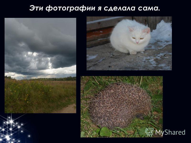 Эти фотографии я сделала сама.