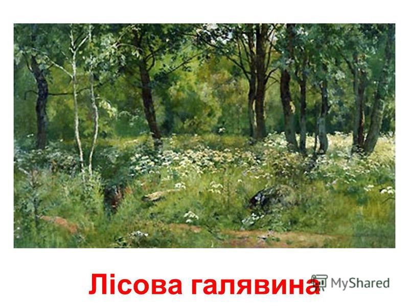 Прогулянка у лісі