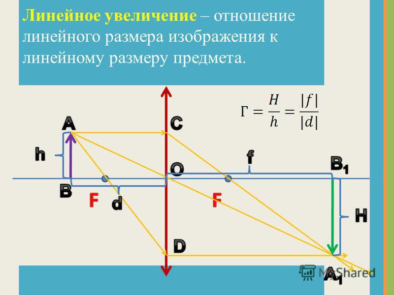 Линейное увеличение – отношение линейного размера изображения к линейному размеру предмета.