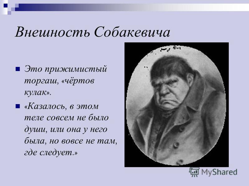 Внешность Собакевича Это прижимистый торгаш, « чёртов кулак ». « Казалось, в этом теле совсем не было души, или она у него была, но вовсе не там, где следует.»