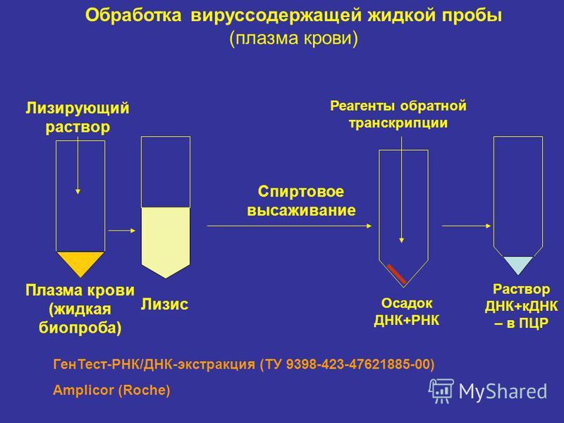 Плазма крови (жидкая биопроба) Лизис Спиртовое высаживание Раствор ДНК+кДНК – в ПЦР Лизирующий раствор Осадок ДНК+РНК Реагенты обратной транскрипции Обработка вируссодержащей жидкой пробы (плазма крови) Ген Тест-РНК/ДНК-экстракция (ТУ 9398-423-476218