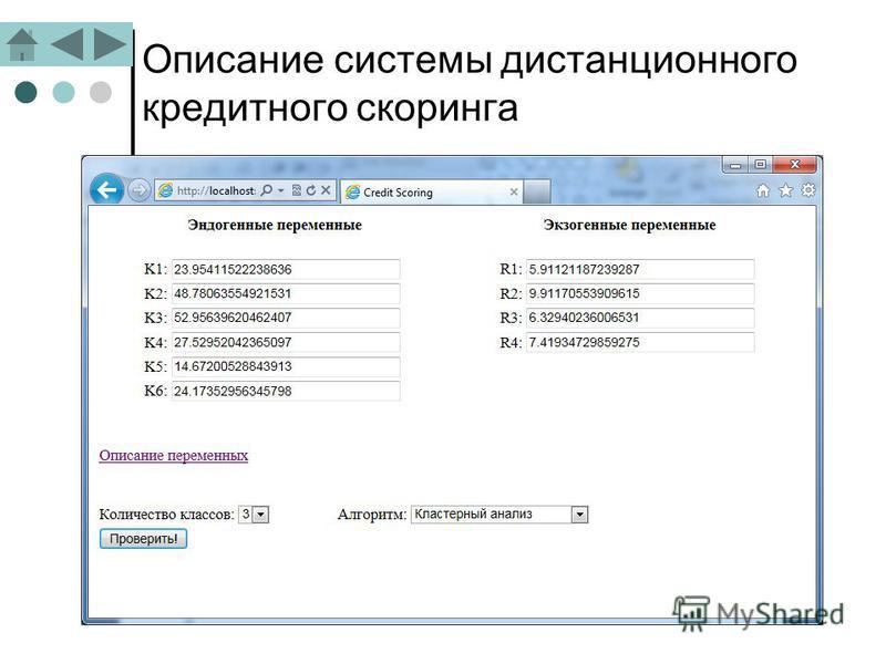 Описание системы дистанционного кредитного скоринга