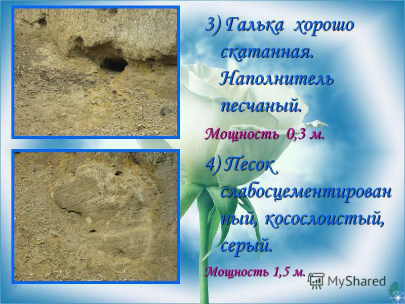 3) Галька хорошо скатанная. Наполнитель песчаный. Мощность 0,3 м. 4) Песок слабо сцементированный, косослоистый, серый. Мощность 1,5 м.