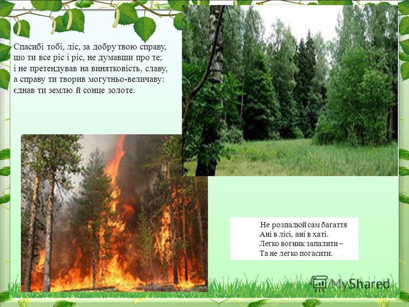 Не розпалюй сам багаття Ані в лісі, ані в хаті. Легко вогник запалити – Та не легко погасити. Спасибі тобі, ліс, за добру твою справу, що ти все ріс і ріс, не думавши про те; і не претендував на винятковість, славу, а справу ти творив могутньо-велича