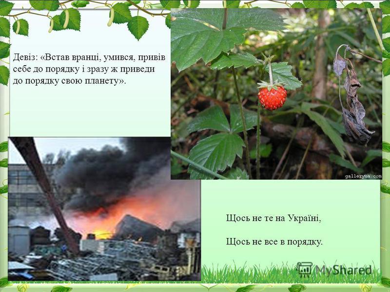 Щось не те на Україні, Щось не все в порядку. Девіз: «Встав вранці, умився, привів себе до порядку і зразу ж приведи до порядку свою планету».