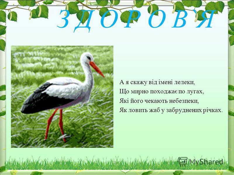 З Д О Р О В`Я А я скажу від імені лелеки, Що мирно походжає по лугах, Які його чекають небезпеки, Як ловить жаб у забруднених річках.