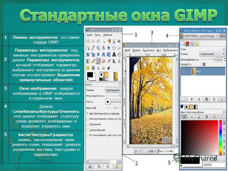 1 Панель инструментов: это самое сердце GIMP. 2 Параметры инструментов: под панелью инструментов прикреплен диалог Параметры инструментов, который отображает параметры выбранного инструмента (в данном случае это инструмент Выделение прямоугольных обл