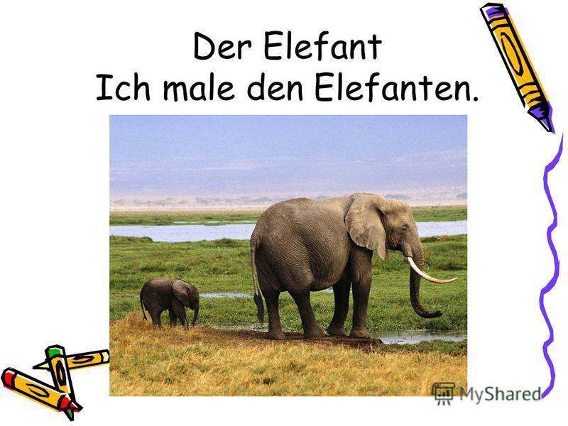Der Elefant Ich male den Elefanten.