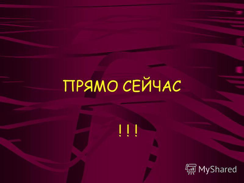 ПРЯМО СЕЙЧАС ! ! !