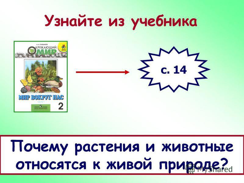 Узнайте из учебника с. 14 Почему растения и животные относятся к живой природе?