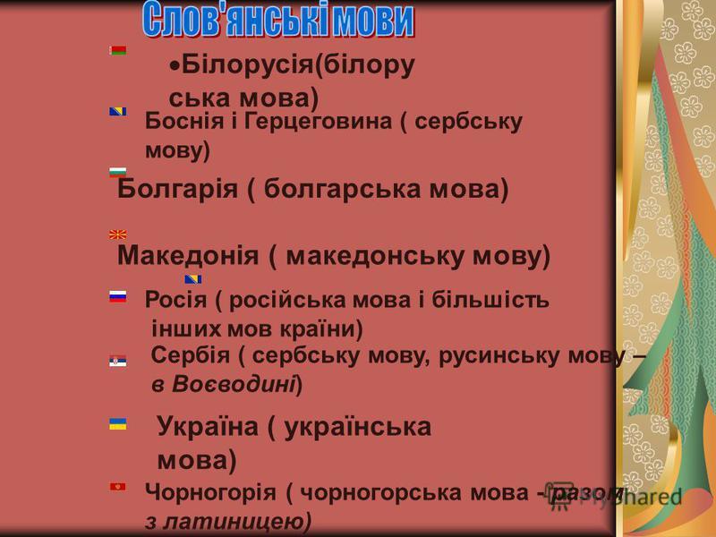 Болгарія ( болгарська мова) Македонія ( македонську мову) Росія ( російська мова і більшість інших мов країни) Сербія ( сербську мову, русинську мову – в Воєводині) Україна ( українська мова) Чорногорія ( чорногорська мова - разом з латиницею) Білору