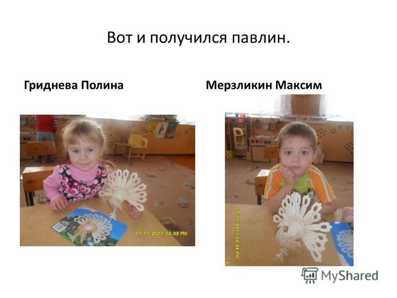 Вот и получился павлин. Гриднева Полина Мерзликин Максим
