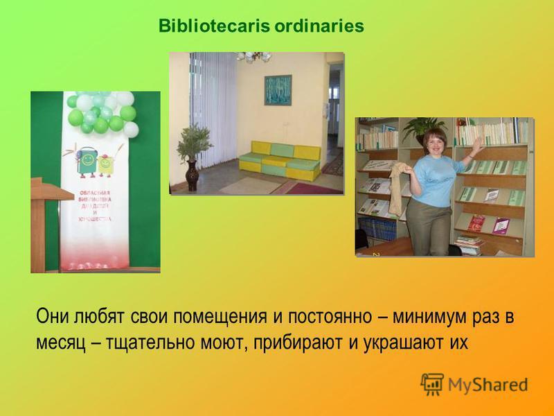 Bibliotecaris ordinaries Они любят свои помещения и постоянно – минимум раз в месяц – тщательно моют, прибирают и украшают их